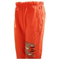 """Спортивные брюки для девочки """"Леди"""" Турция"""
